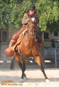 "Note the loose reins as the colt side-passes on the rider's leg cues alone, a Spanish style of riding known as ""a la jinete"" (by the rider's body, as opposed to ""by the bit"")"